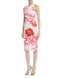 David Meister Large Scale Floral Sheath Dress White Pink