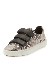 Rag And Bone Kent Grip Strap Lo Top Sneaker Fawn Python Rag And Bone