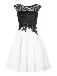 Eliza J Sleeveless Lace Box Pleat Dress Black And Ivory Black And Ivory