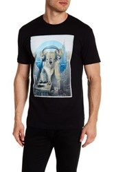Kid Dangerous Koala Dj Front Graphic Print Tee Black