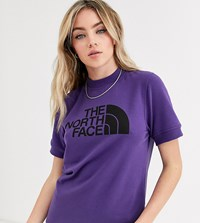 The North Face Nse Graphic T Shirt In Purple