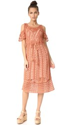 See By Chloe Lace Dress Red Rock Canyon