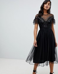 Frock And Frill Mesh Embellished Midi Dress In Black