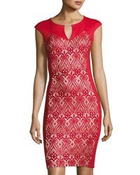 Jax Lace Inset Cap Sleeve Sheath Dress Red Black