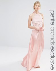 John Zack Petite Maxi Halter Dress With Lace Bodice And Sateen Skirt Nude Pink