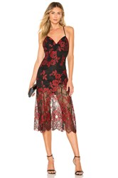 X By Nbd Salma Gown Red