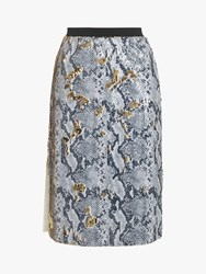 Ted Baker Meeoh Snakeskin Midi Skirt Light Grey