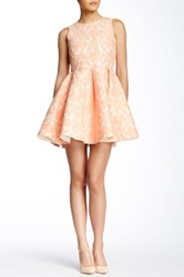Gracia Floral Mesh Flare Dress Pink