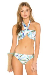 Ella Moss Birds Of Paradise Wrap Bandeau Bikini Top Green