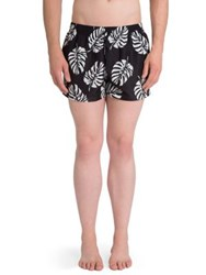Dolce And Gabbana Banana Leaf Printed Swim Shorts Black White