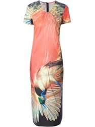 Walter Van Beirendonck Vintage Paradise Bird Printed Dress Multicolour