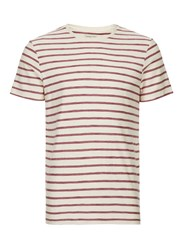 Selected Brown Homme Off White And Red Stripe T Shirt