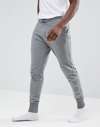 Esprit Lounge Jogger In Grey
