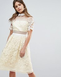 Chi Chi London Premium Lace Panelled Dress With Contrast Collar Lemon Yellow