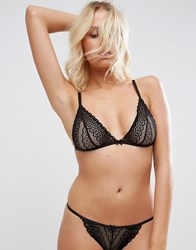 Asos Viola Linear Lace Triangle Bra Black
