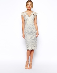 Asos Premium Pencil Dress With Seashell Scallop Lace Grey