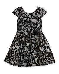 Zoe Lovely Lace Contrast Overlay Dress Black White