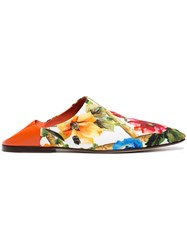 Dolce And Gabbana Floral Leather Mule Slippers Multicolour
