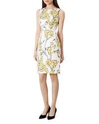 Hobbs London Fiona Floral Print Dress 100 Exclusive Ivory Multi