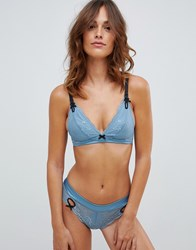 Heidi Klum Intimates Lace Band In Blue With Contrast Strap