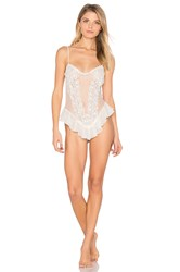Flora Nikrooz Showstopper Netting Teddy White