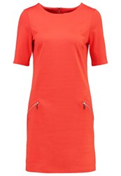 Wallis Petite Ponte Jersey Dress Orange