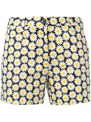Love Moschino Daisies Print Shorts Black