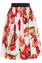 Dolce And Gabbana Floral Print Cotton Poplin Skirt Red