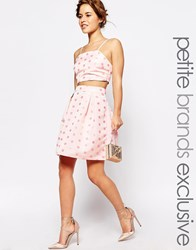 True Decadence Petite Full Prom Skirt In Textured Spot Pink