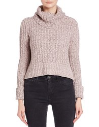 Free People Cropped Knit Turtleneck Sweater