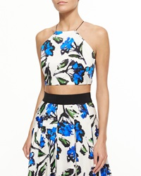 Milly Audrey Floral Print Halter Crop Top