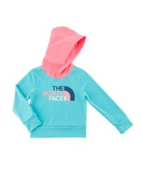 The North Face Hike Water Hooded Logo Tee Size 2 4T Blue