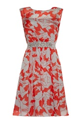 Almost Famous Leaf Print Chiffon Dress Red