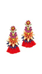 Elizabeth Cole Tianna Earrings Tropical