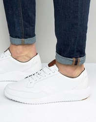 Boxfresh Rily Leather Trainers White