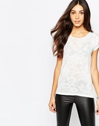 Soaked In Luxury Short Sleeve Lace Top Cream