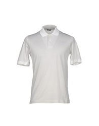 Cruciani Polo Shirts White