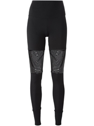 Lost And Found Sheer Panel Leggings Black