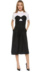Endless Rose Collared Jumpsuit Black Combo