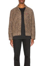 Levi's Premium The Trucker Jacket Patchy Cheetah