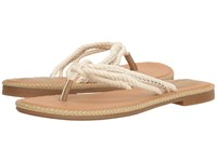 Sperry Anchor Coy Box Natural Gold Women's Shoes Tan
