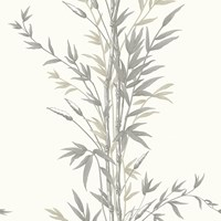 Cole And Son Bamboo Wallpaper 100 5025