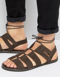 Asos Gladiator Sandals In Brown Suede With Tie Lace Brown