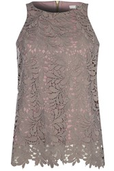 True Decadence Lace Top Lilac