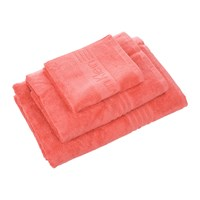Calvin Klein Iconic Coral Towel Blue