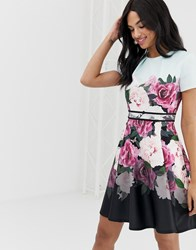 Ted Baker Wilmana Magnificent Floral Skater Dress Multi