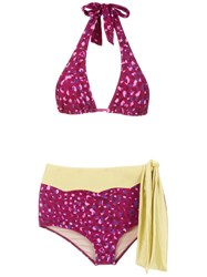 Adriana Degreas Pomegranate Hot Pants Bikini Set Pink