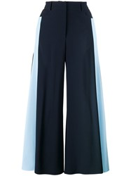 Peter Pilotto Stripe Side Flared Trousers Blue