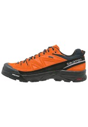Salomon X Alp Gtx Walking Shoes Clementinex Deep Blue Aluminium Orange