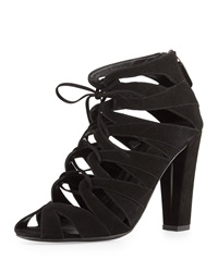 Delman Darci Suede Lace Up Bootie Black